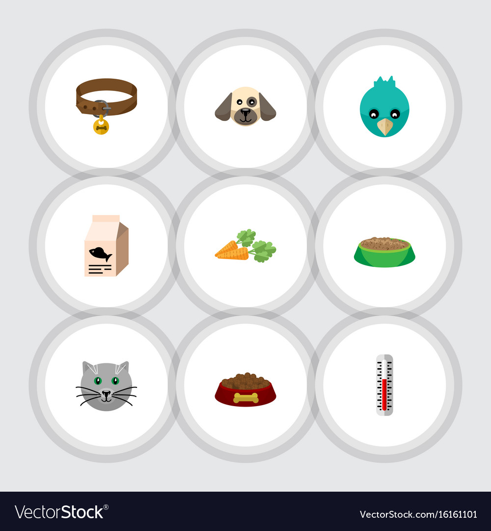 Flat icon pets set of dog food rabbit meal vector image