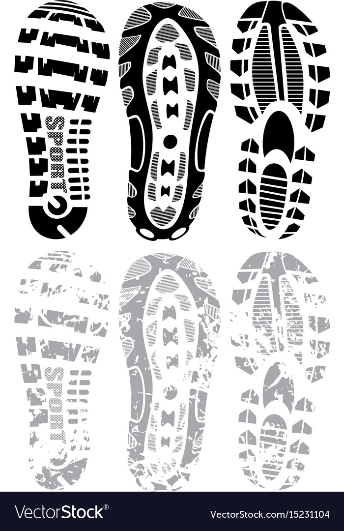 Footprint winter vector image