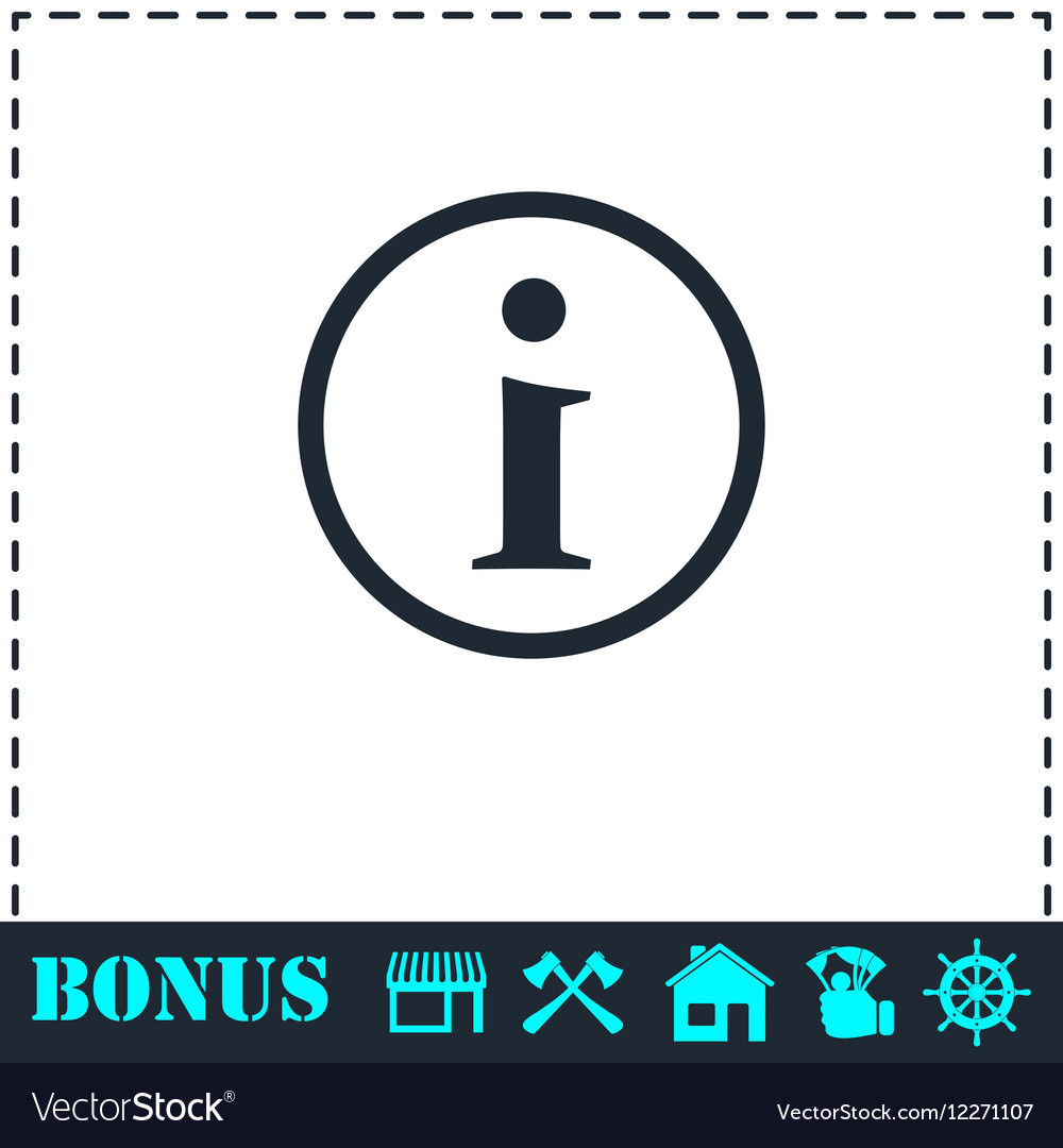 Info icon flat vector image
