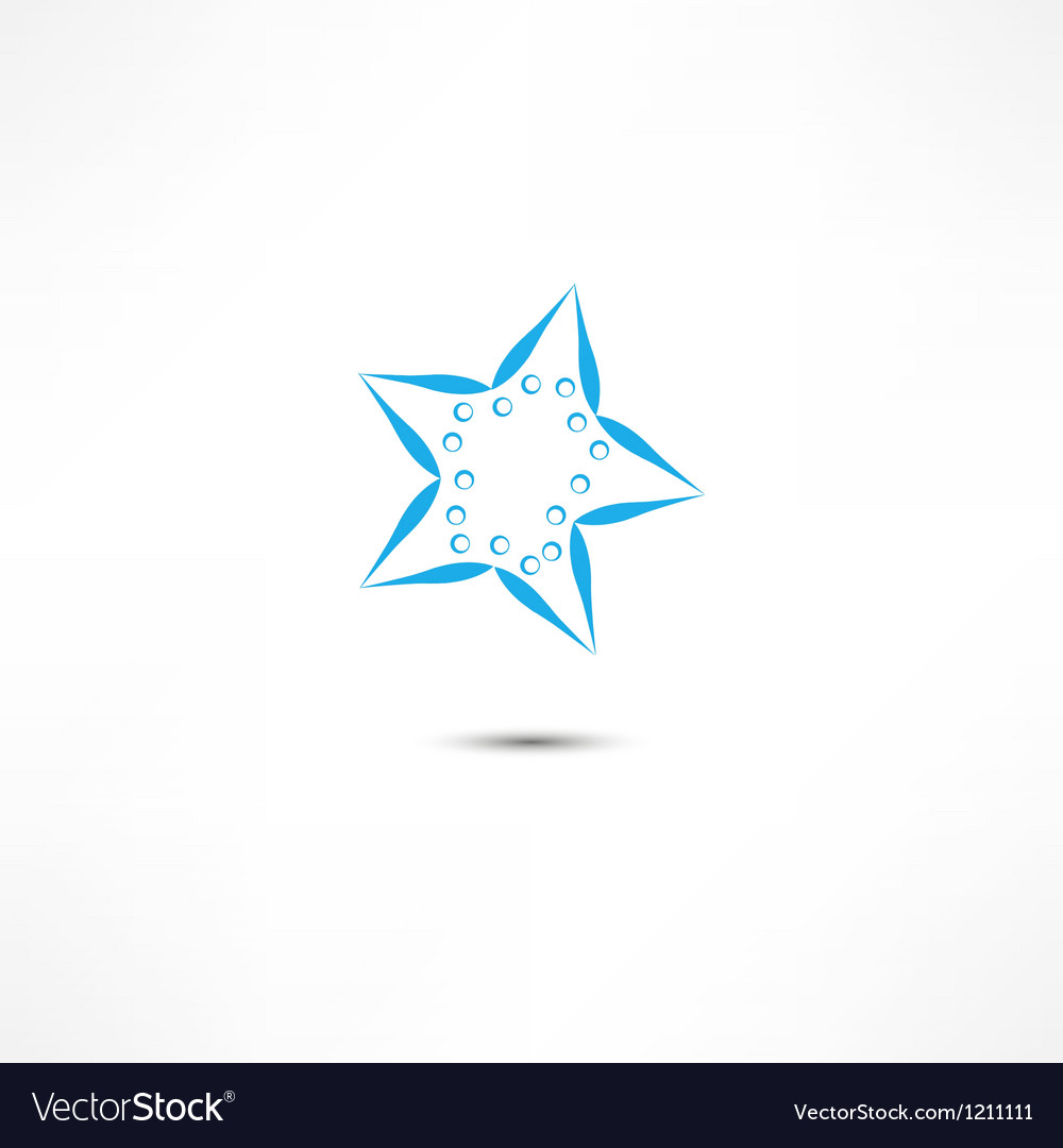 Starfish vector image