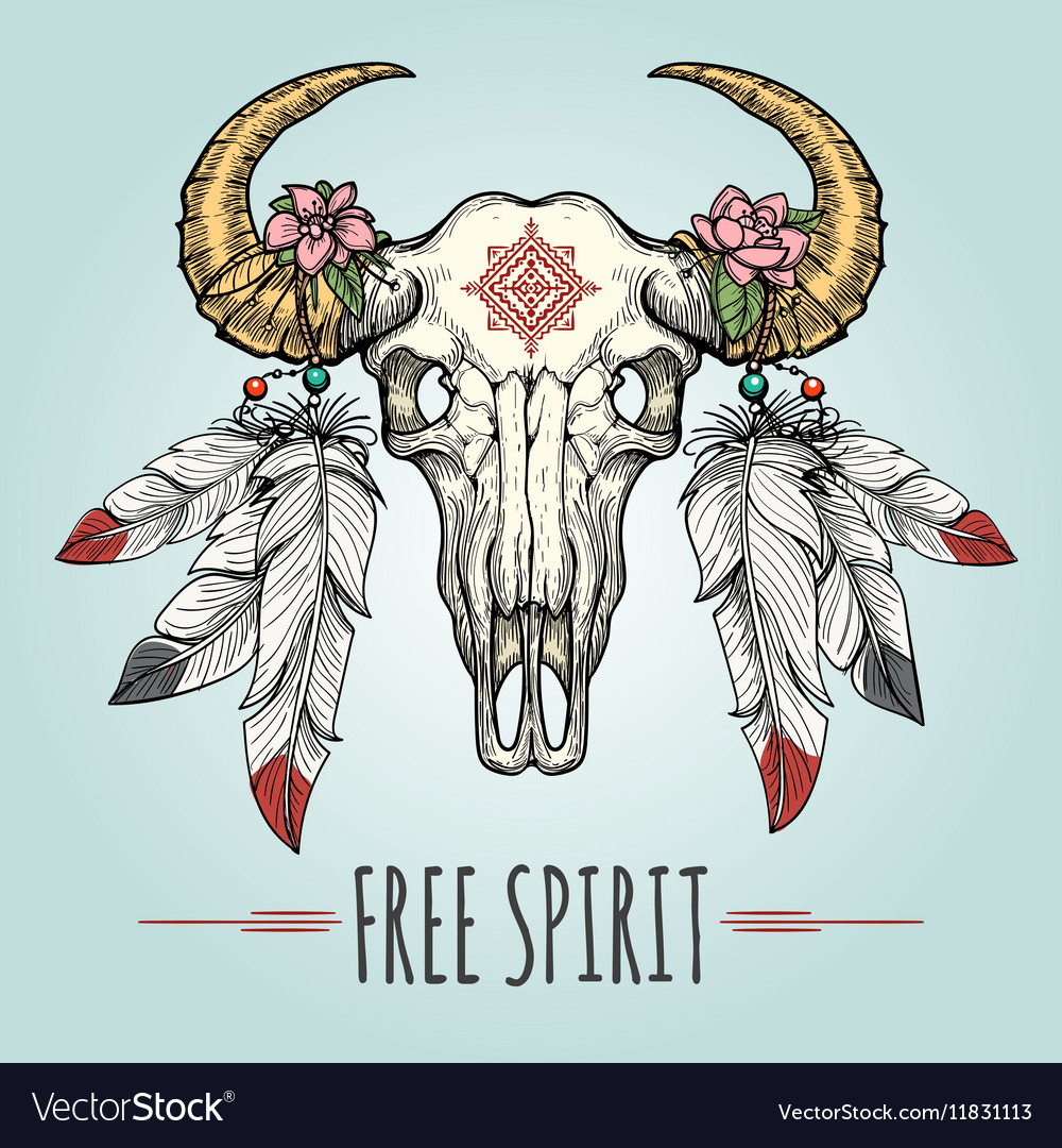 Buffalo skull with ornament and feathers vector image