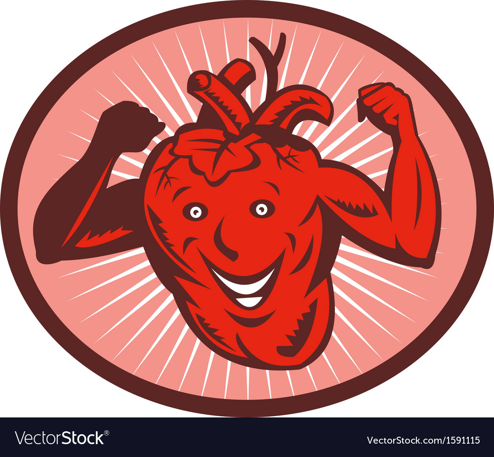 Happy and healthy heart vector image