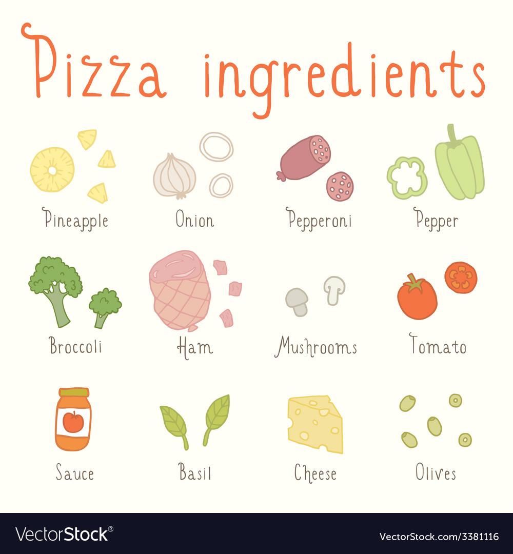 Hand drawn ingredients vector image