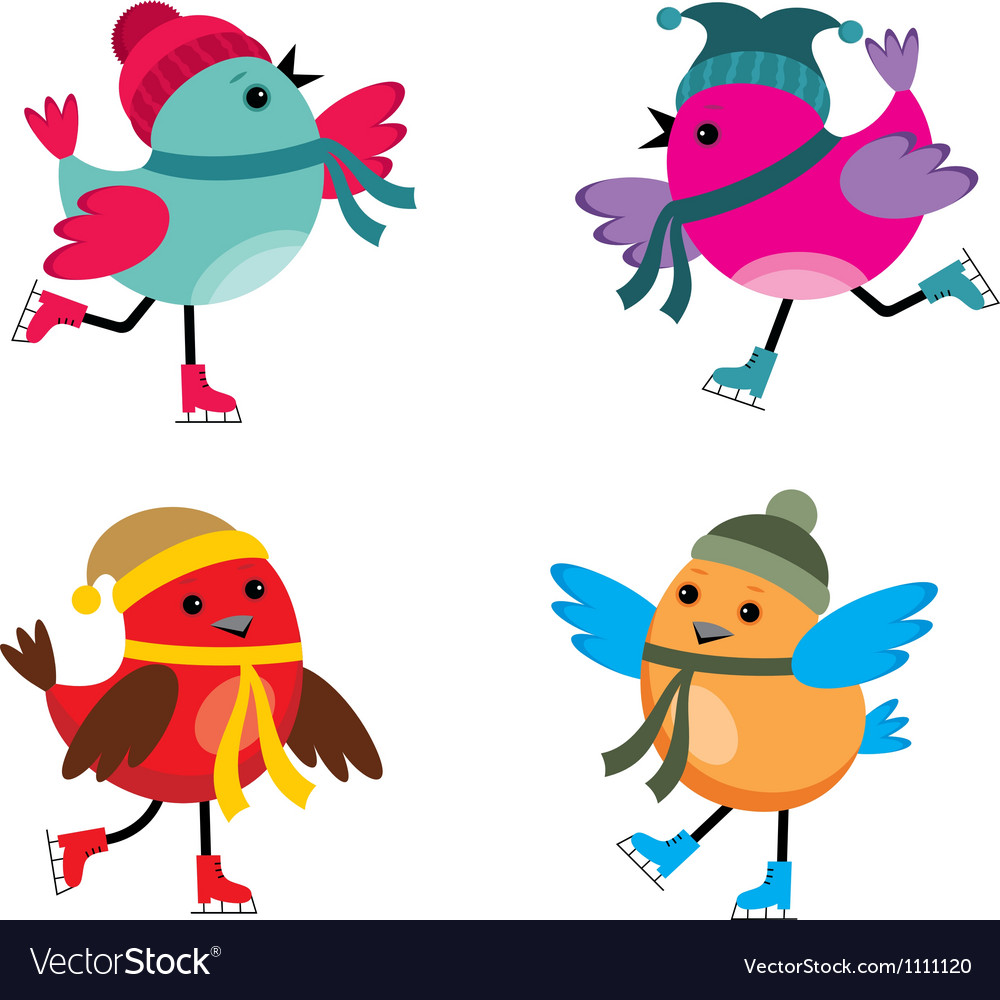 Birds on ice skates vector image
