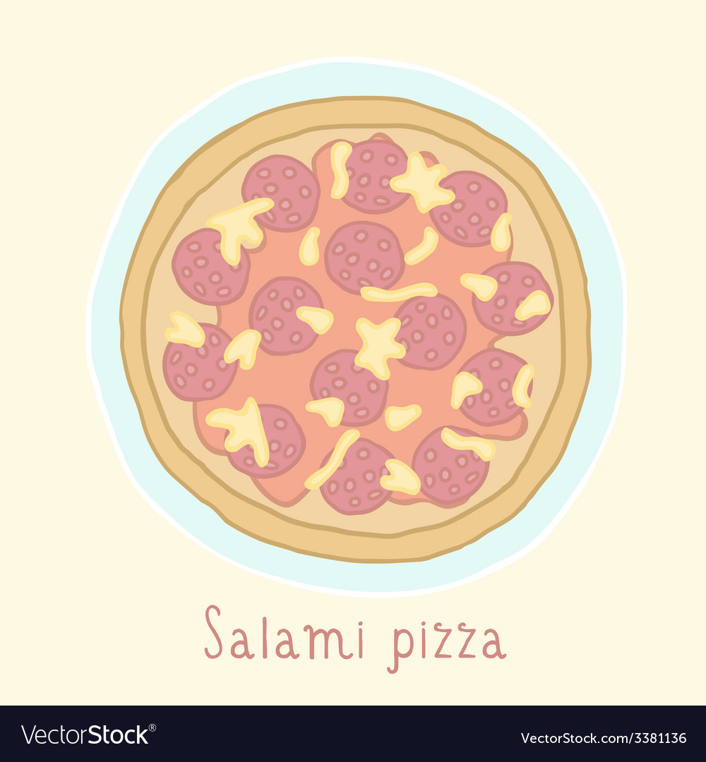 Salami pizza vector image