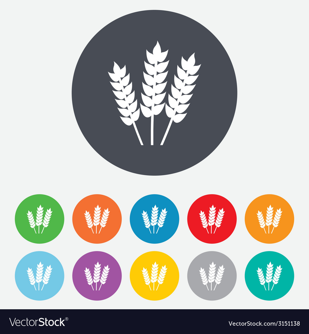 Agricultural sign icon Gluten free or No gluten vector image
