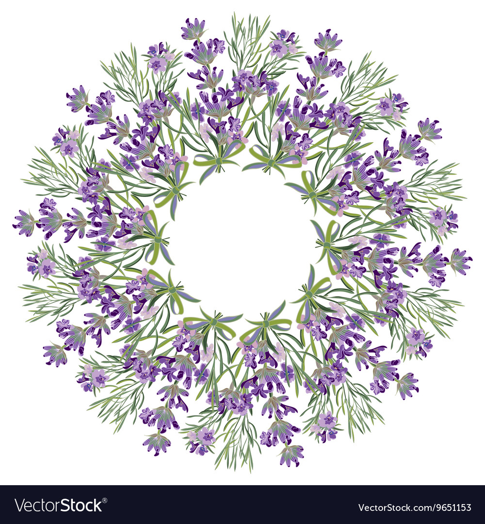 Hand drawing lavender floral mandala zentangle vector image