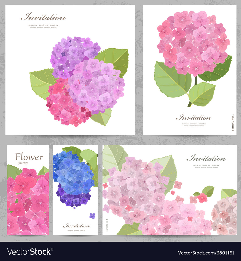 Greeting cards with collection of beautiful vector image