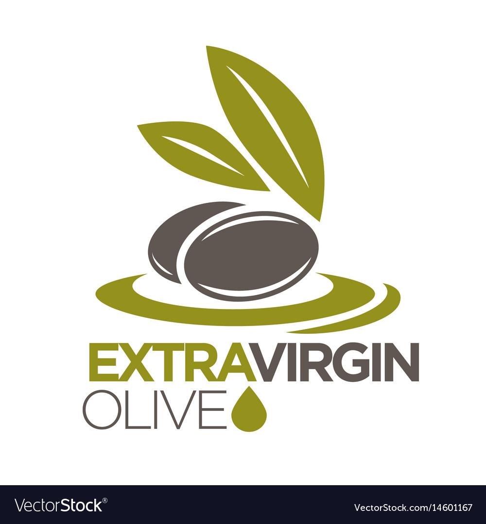 extra virgin olive oil logo design of royalty free vector