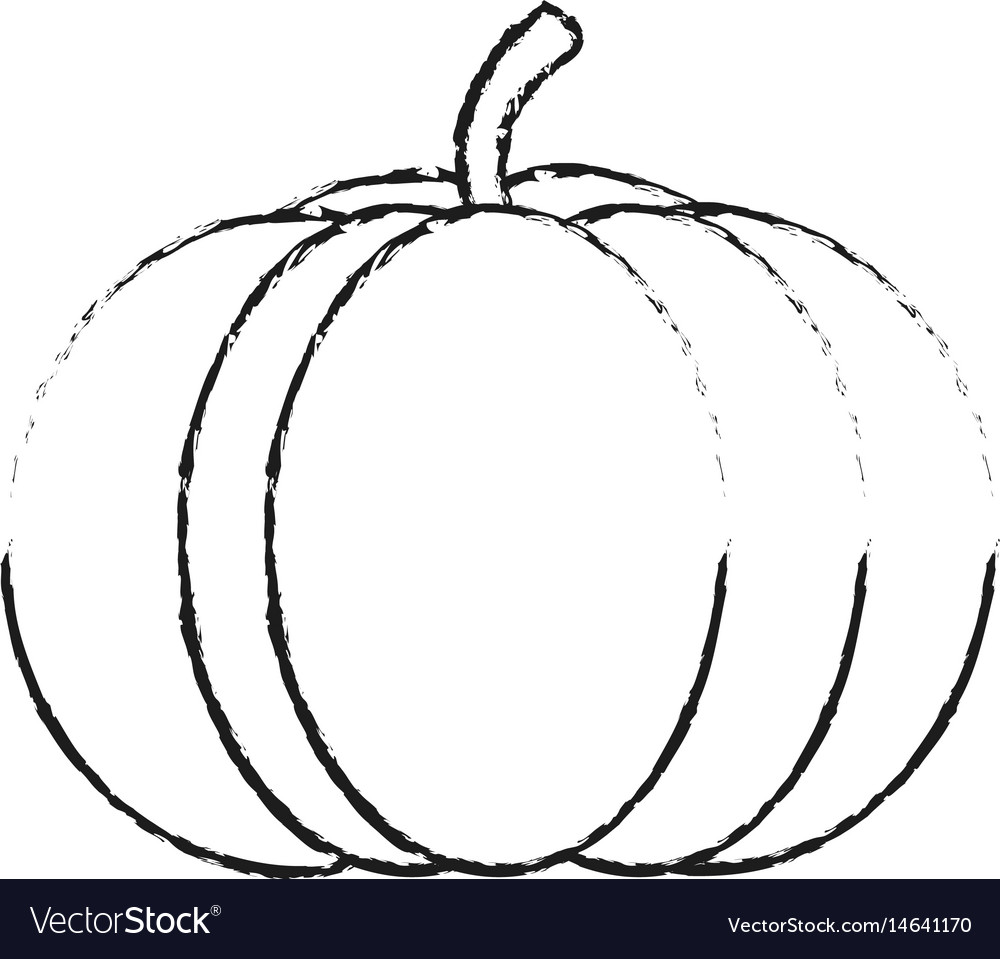 Blurred silhouette pumpkin fruit food vector image