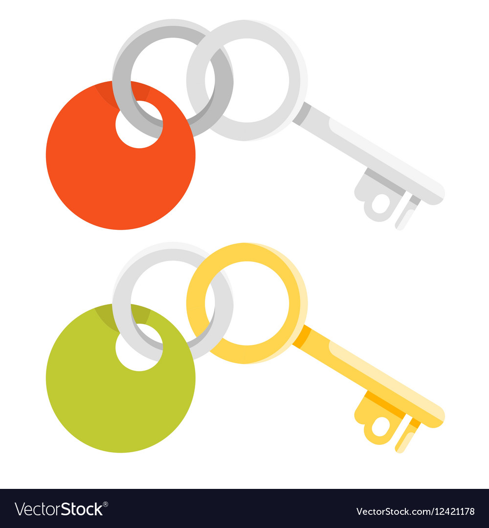Flat style of golden and metal keys vector image