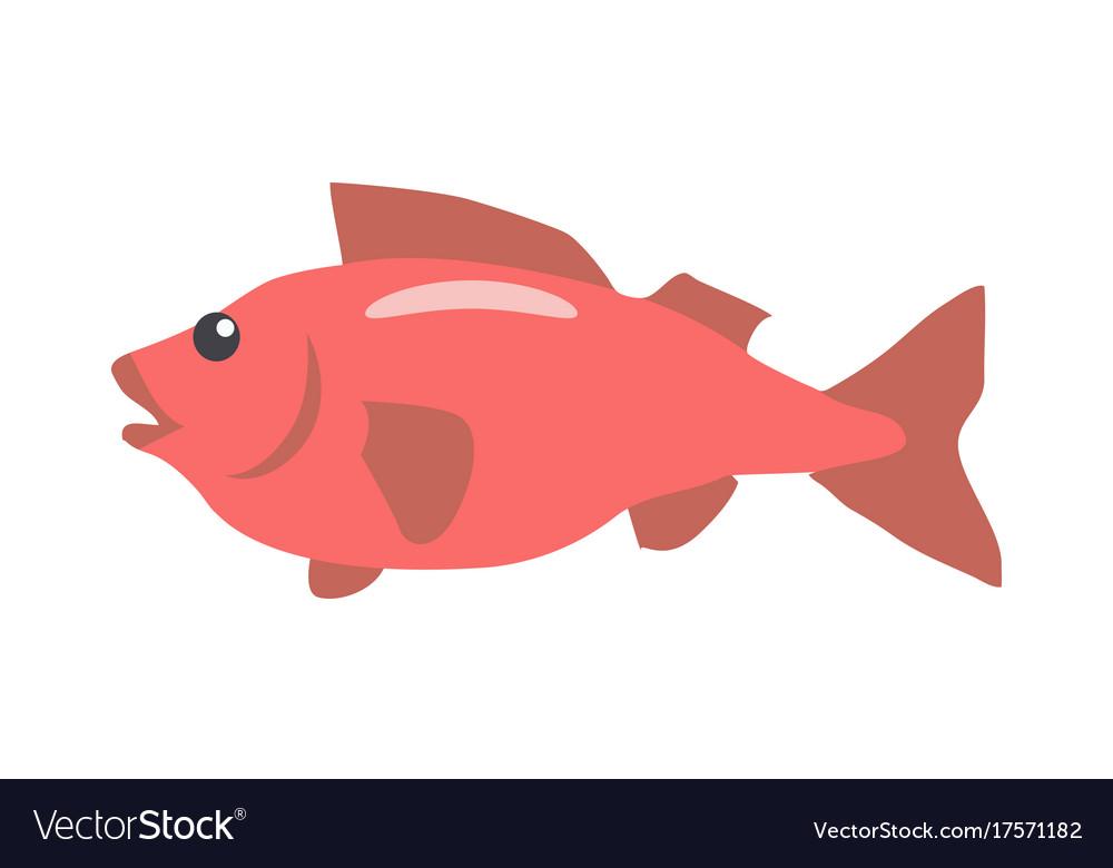 Red fish cartoon flat vector image