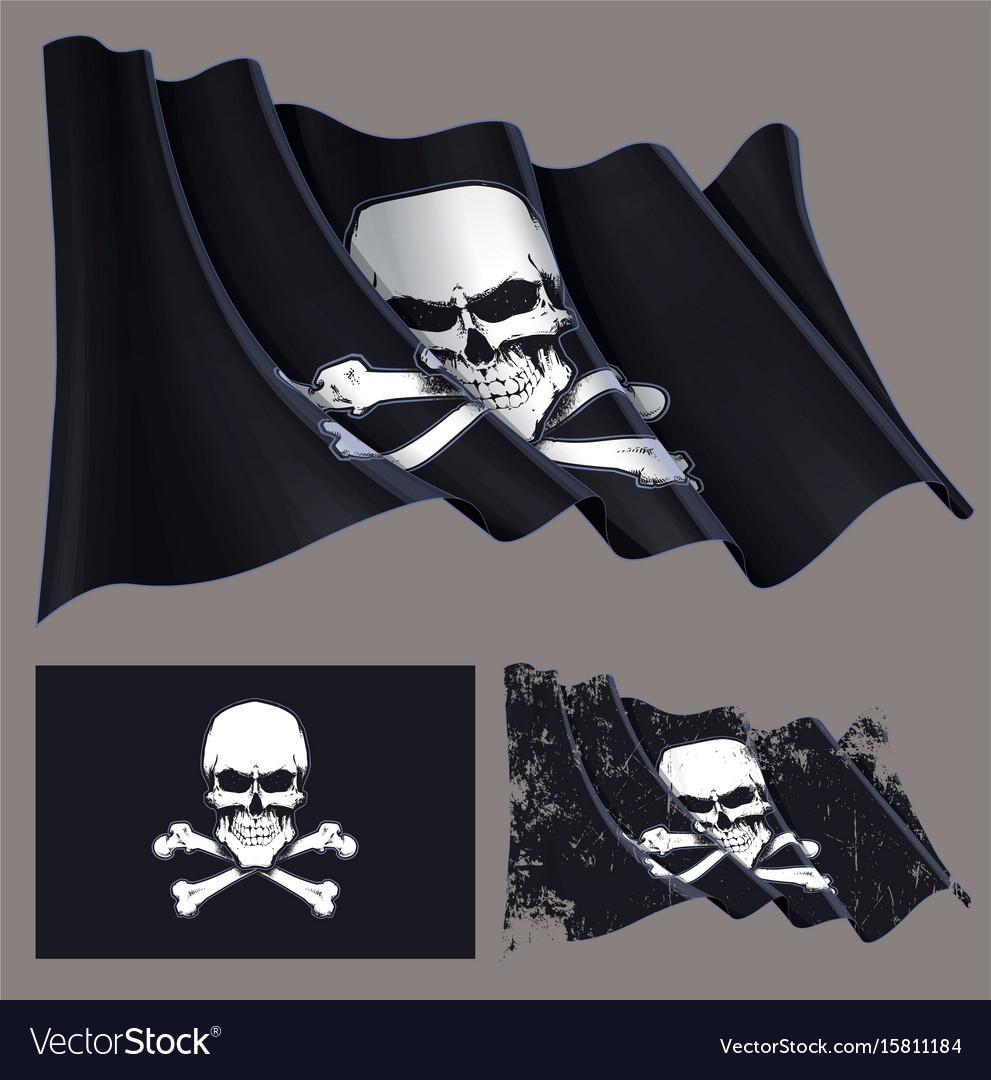 Waving pirate flag skull and bones vector image