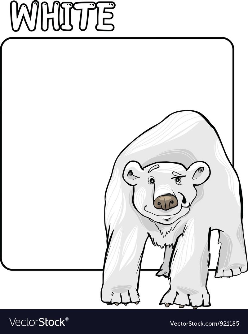 color white and polar bear cartoon royalty free vector image