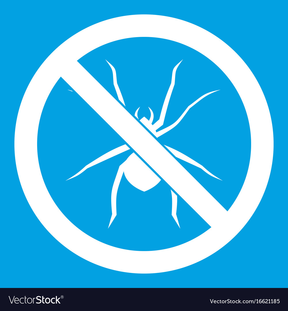 No spider sign icon white vector image
