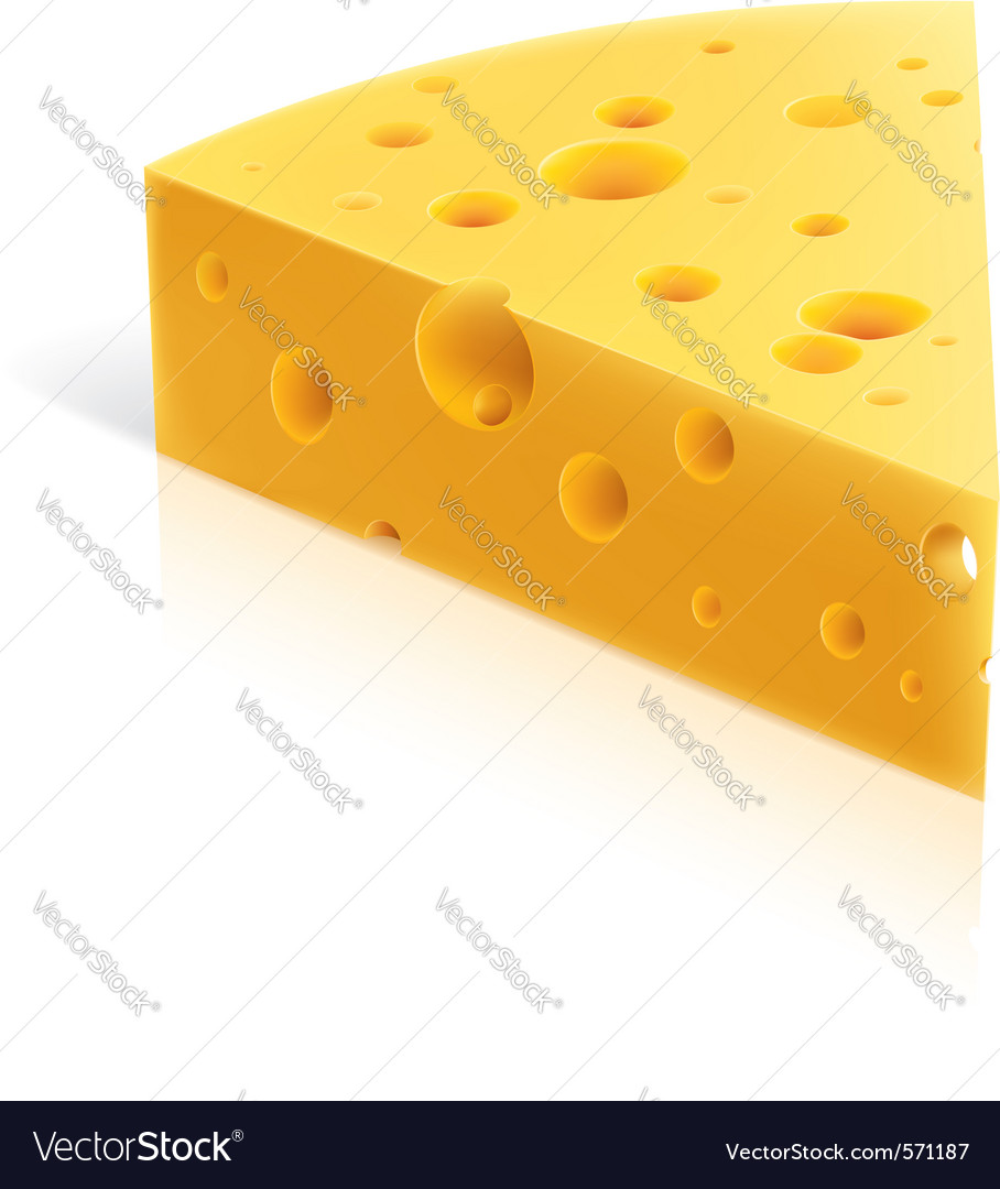 Cheese slice vector image