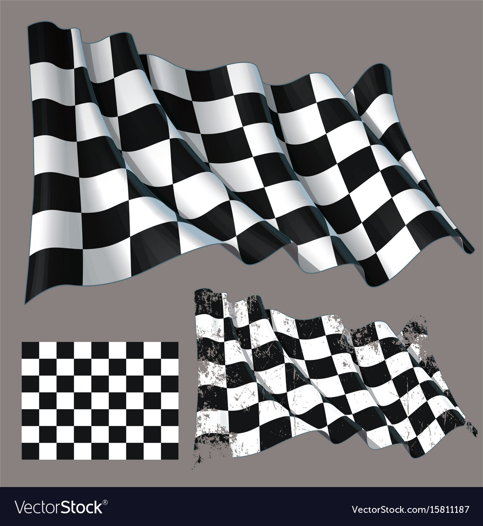 Race checkered finish waving flag vector image