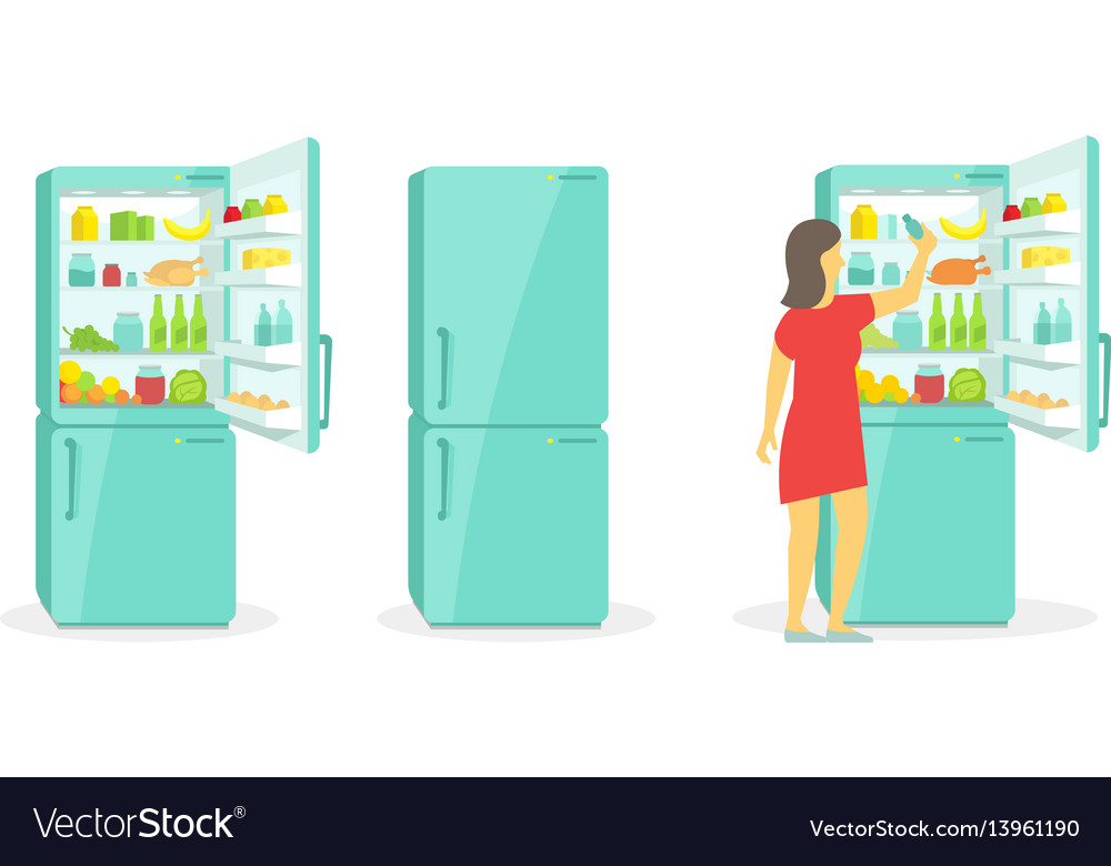 The woman takes in the fridge refrigerator vector image