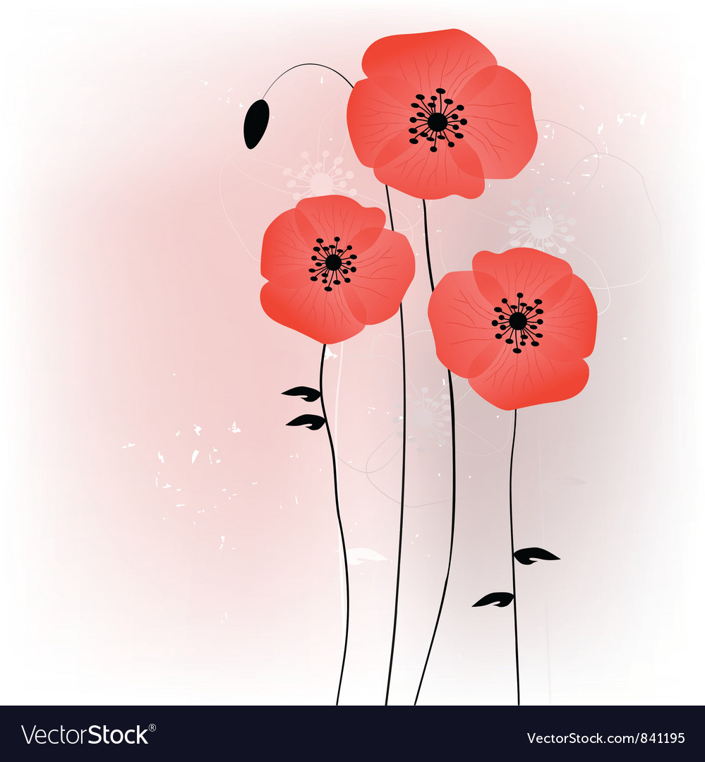 Beautiful poppies background vector image