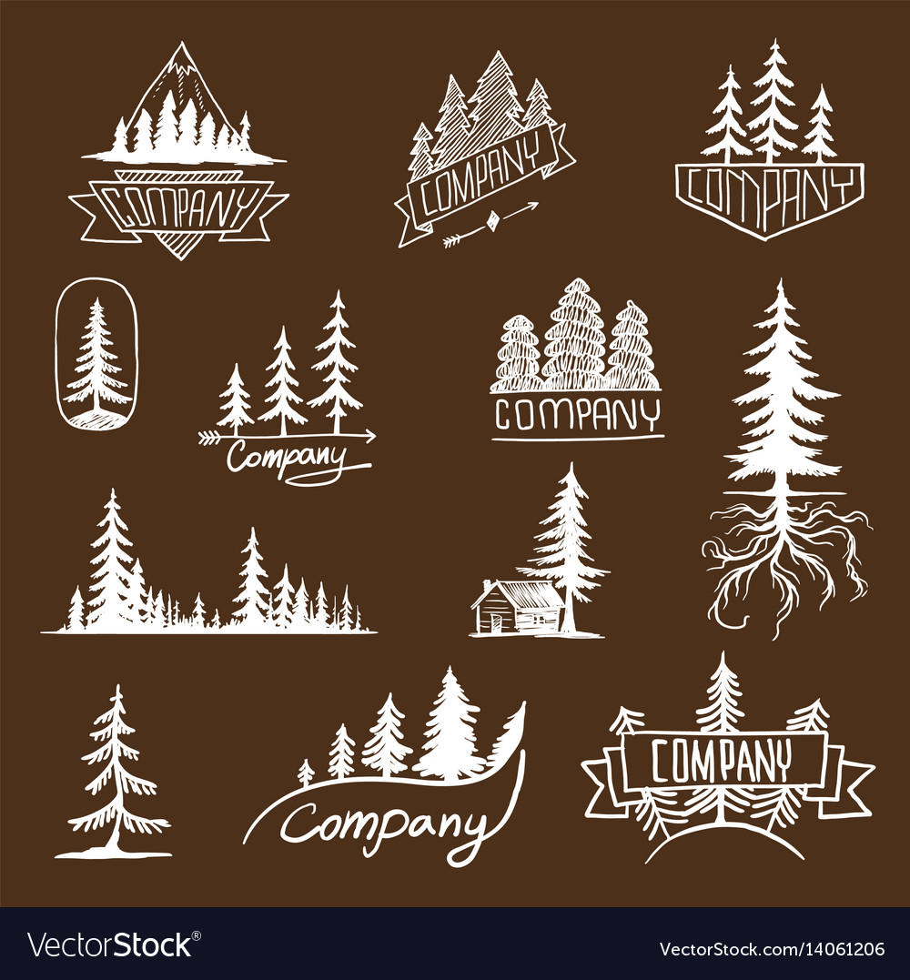 Forest badge tree collection vector image