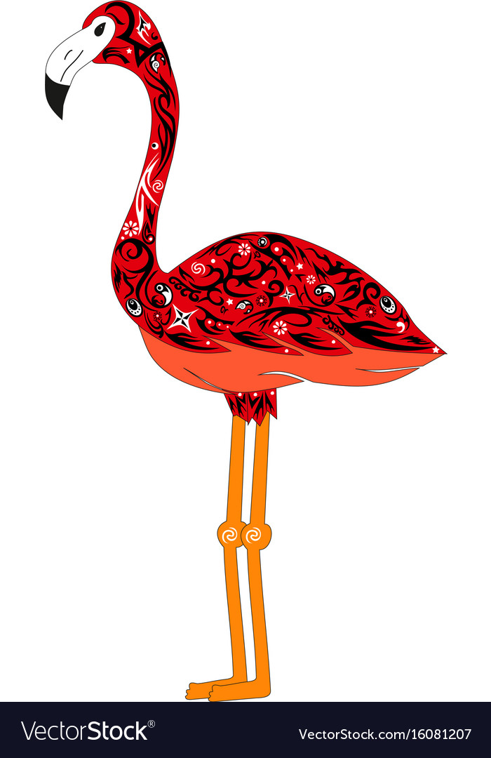 The image of a color flamingo a bird with vector image
