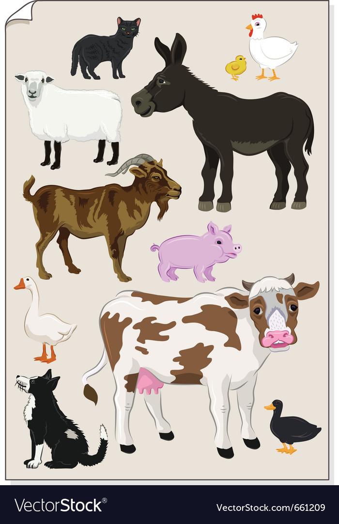 Farm animals stickers vector image