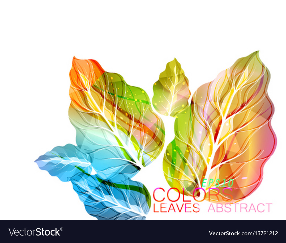 Leaves abstract colors