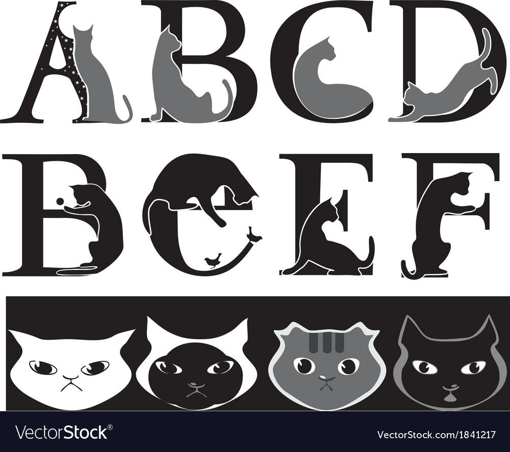 Cat font vector image