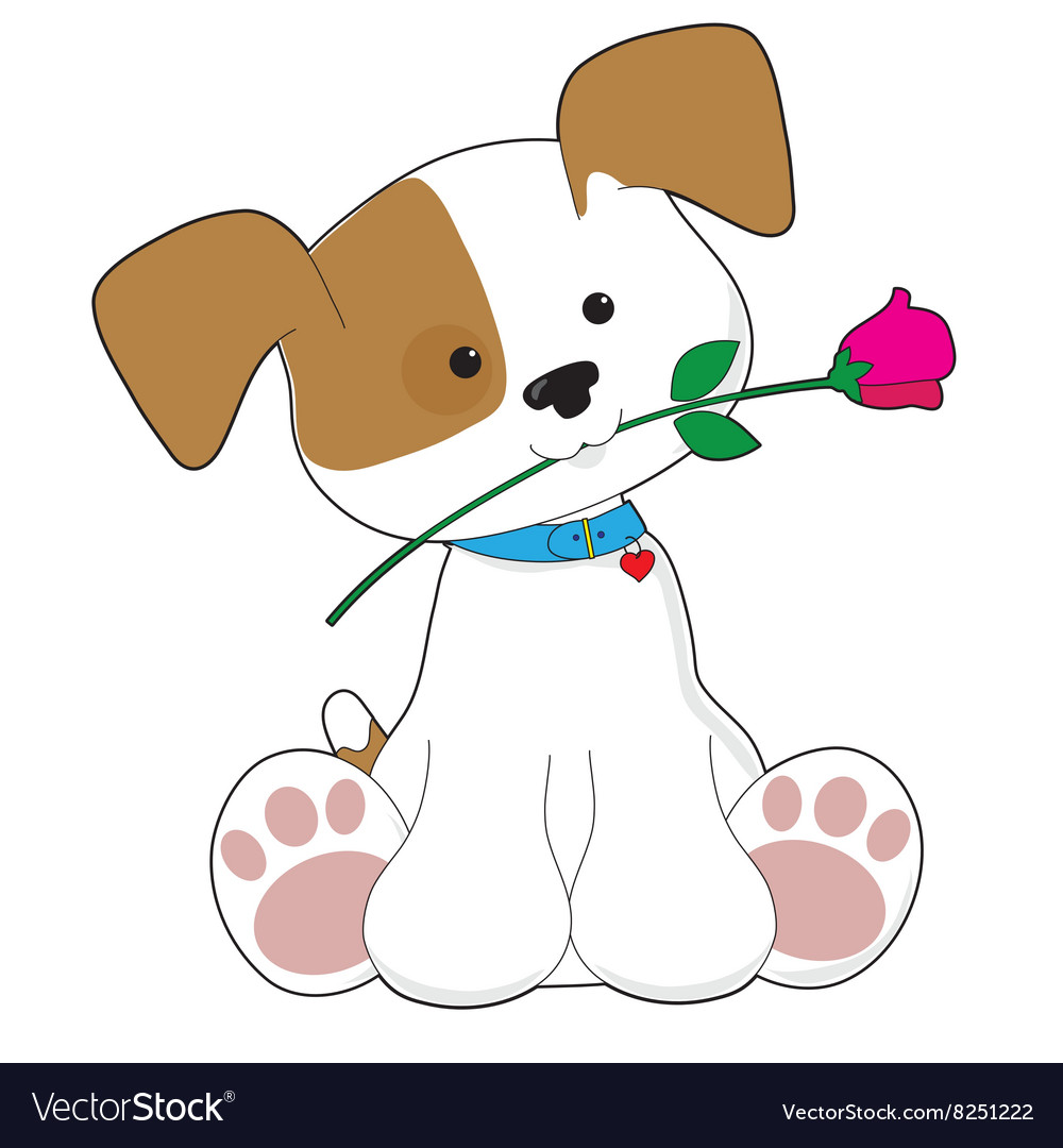 Cute Puppy with Rose vector image