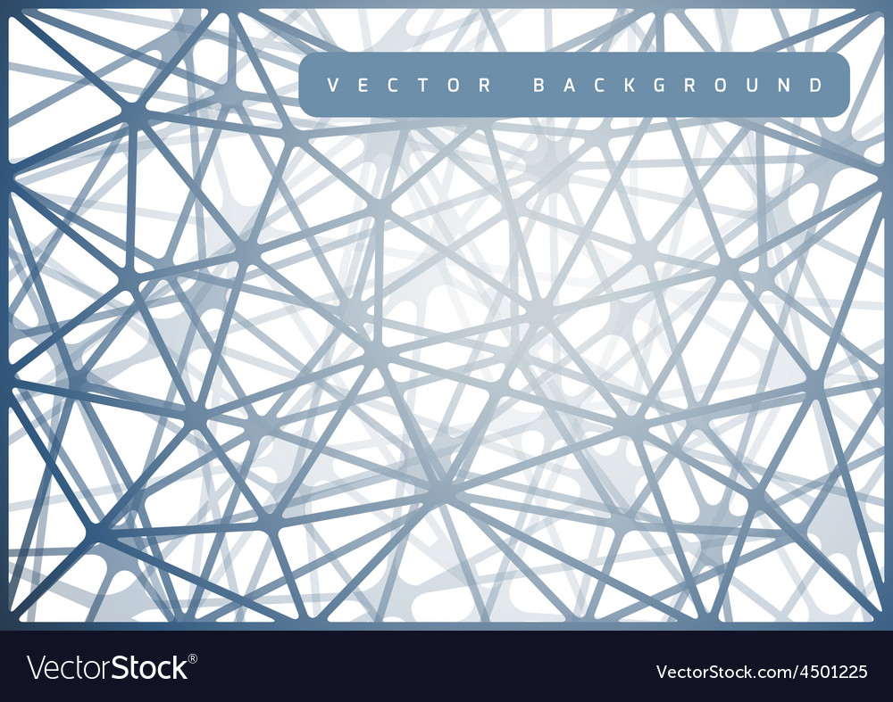 Spiderweb Design vector image