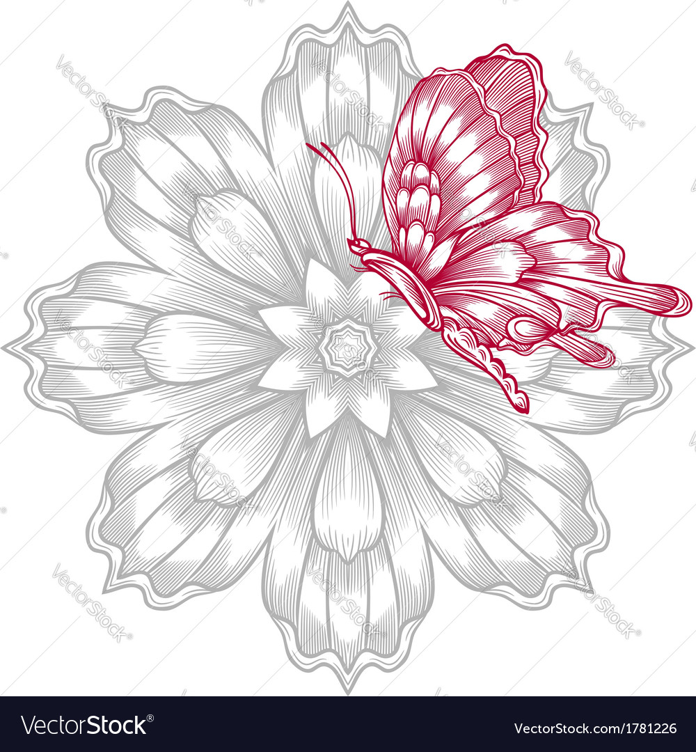 red decorative butterfly with flower royalty free vector
