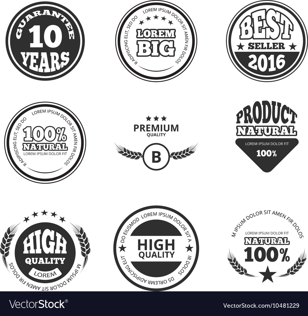 High quality premium guarantee vintage vector image