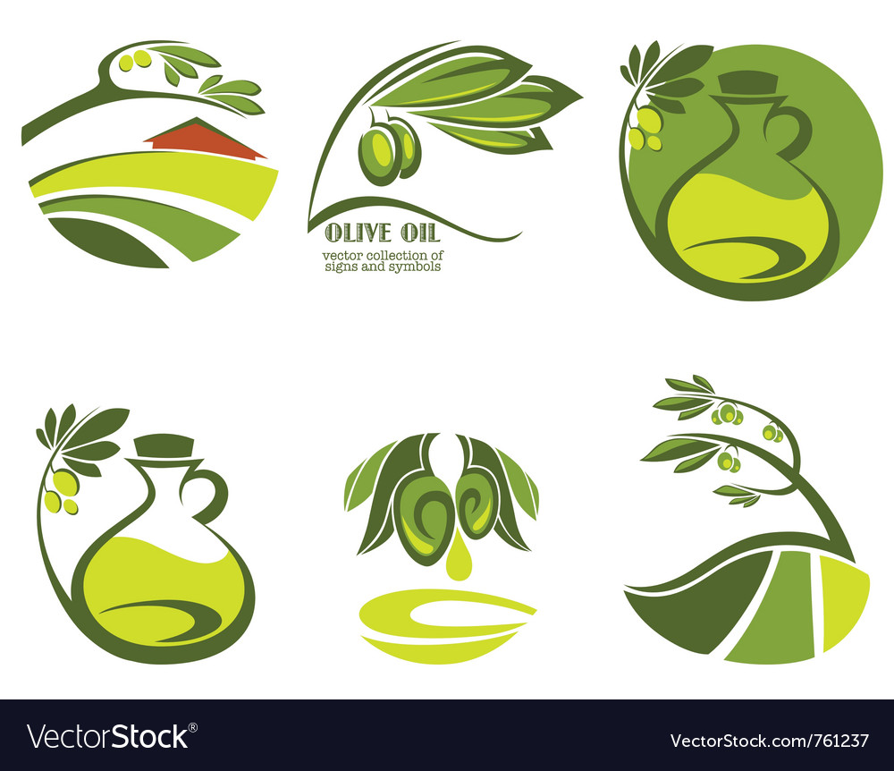 Olive oil and landscapes vector image