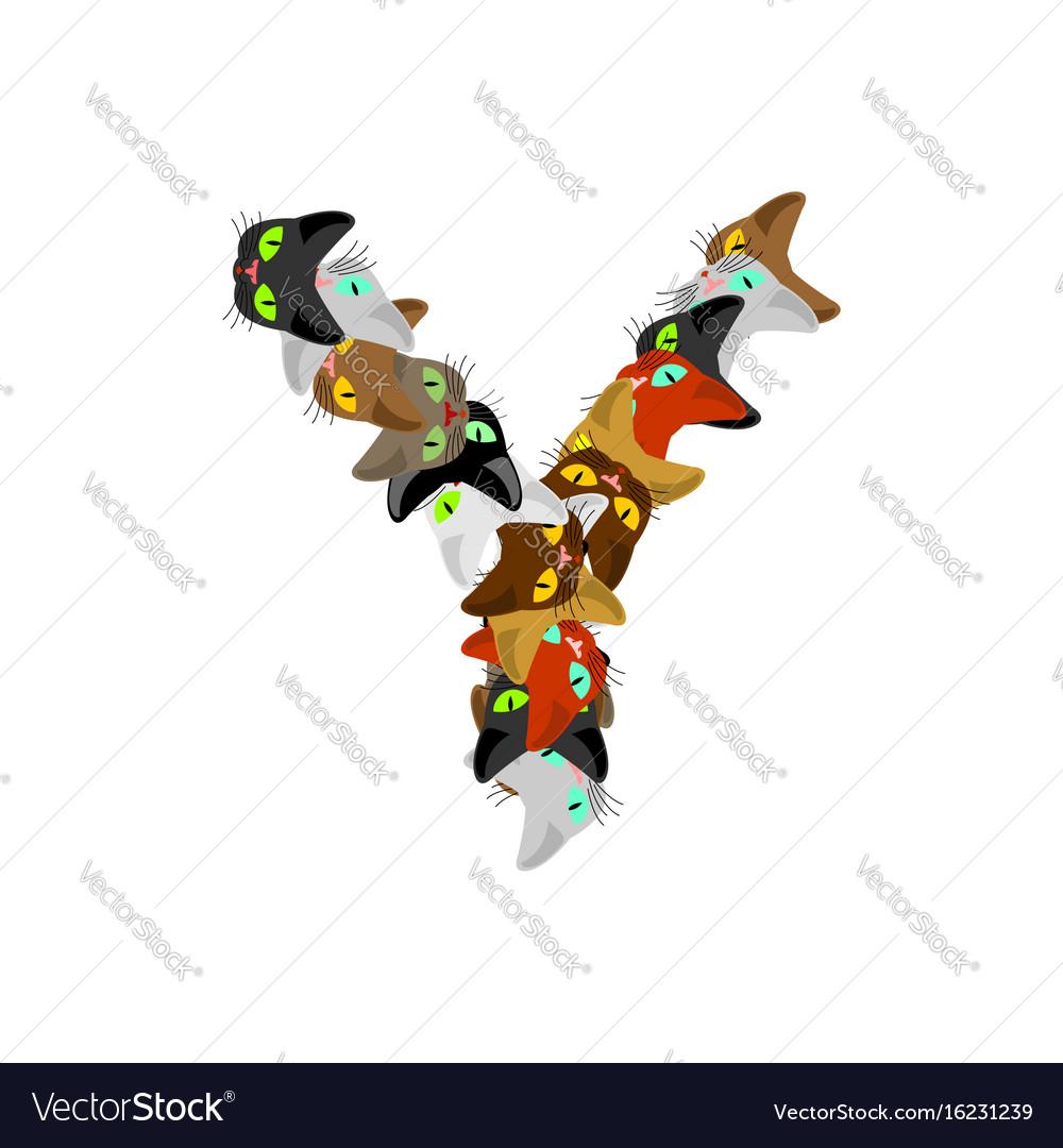 Letter y cat font pet alphabet symbol home animal vector image