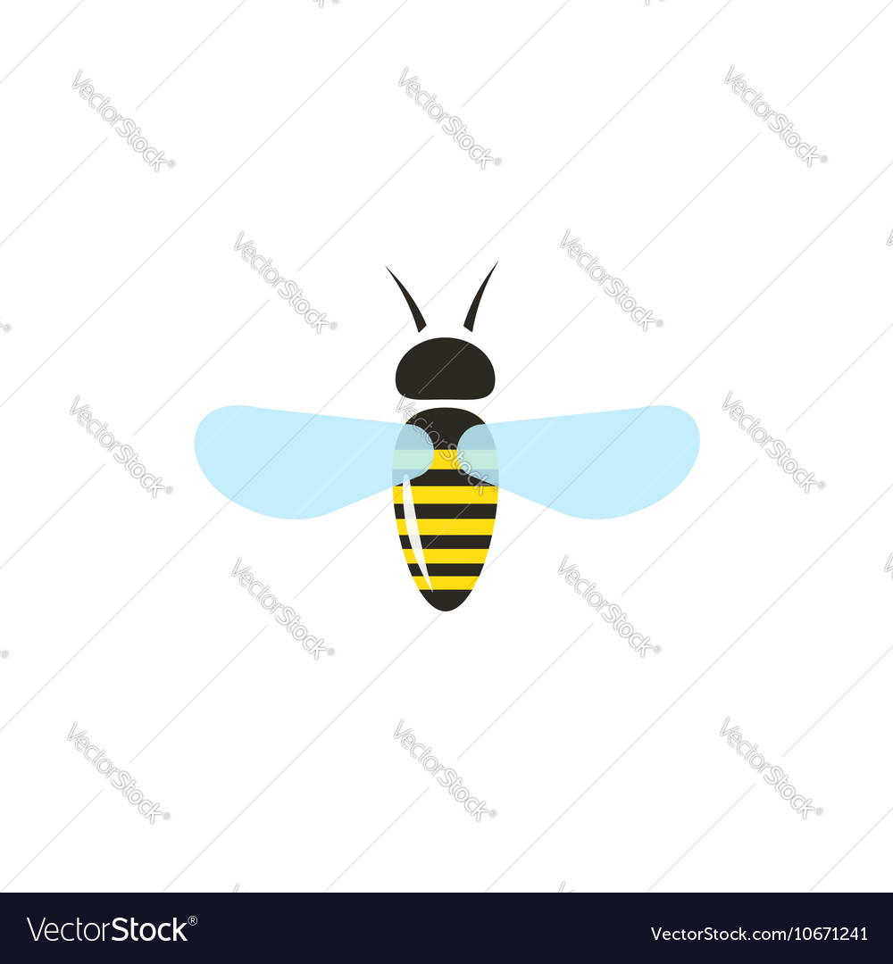 Bee isolated on white background flat vector image