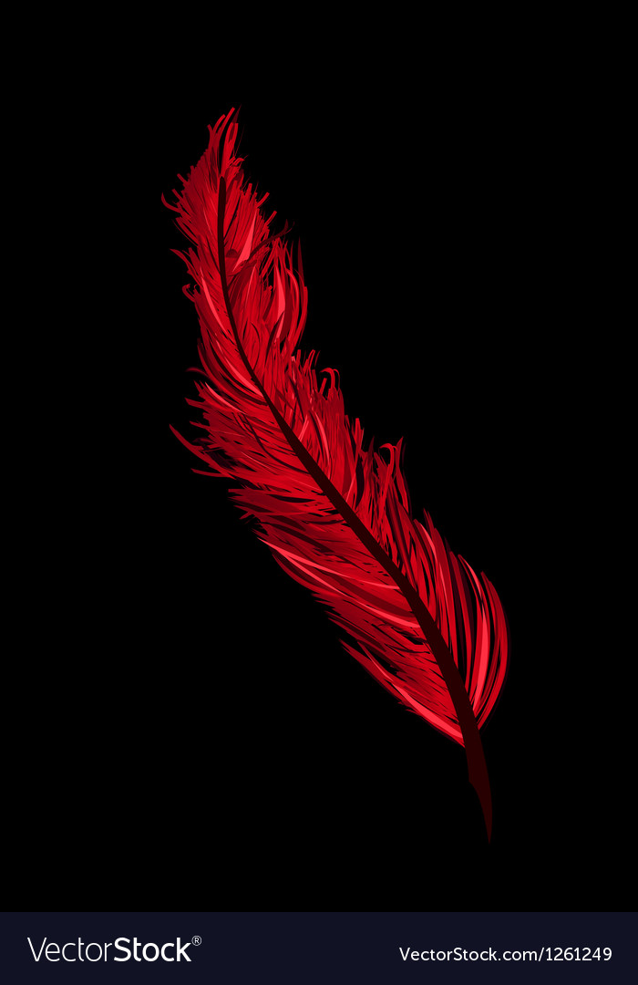 A red feather Vector Image