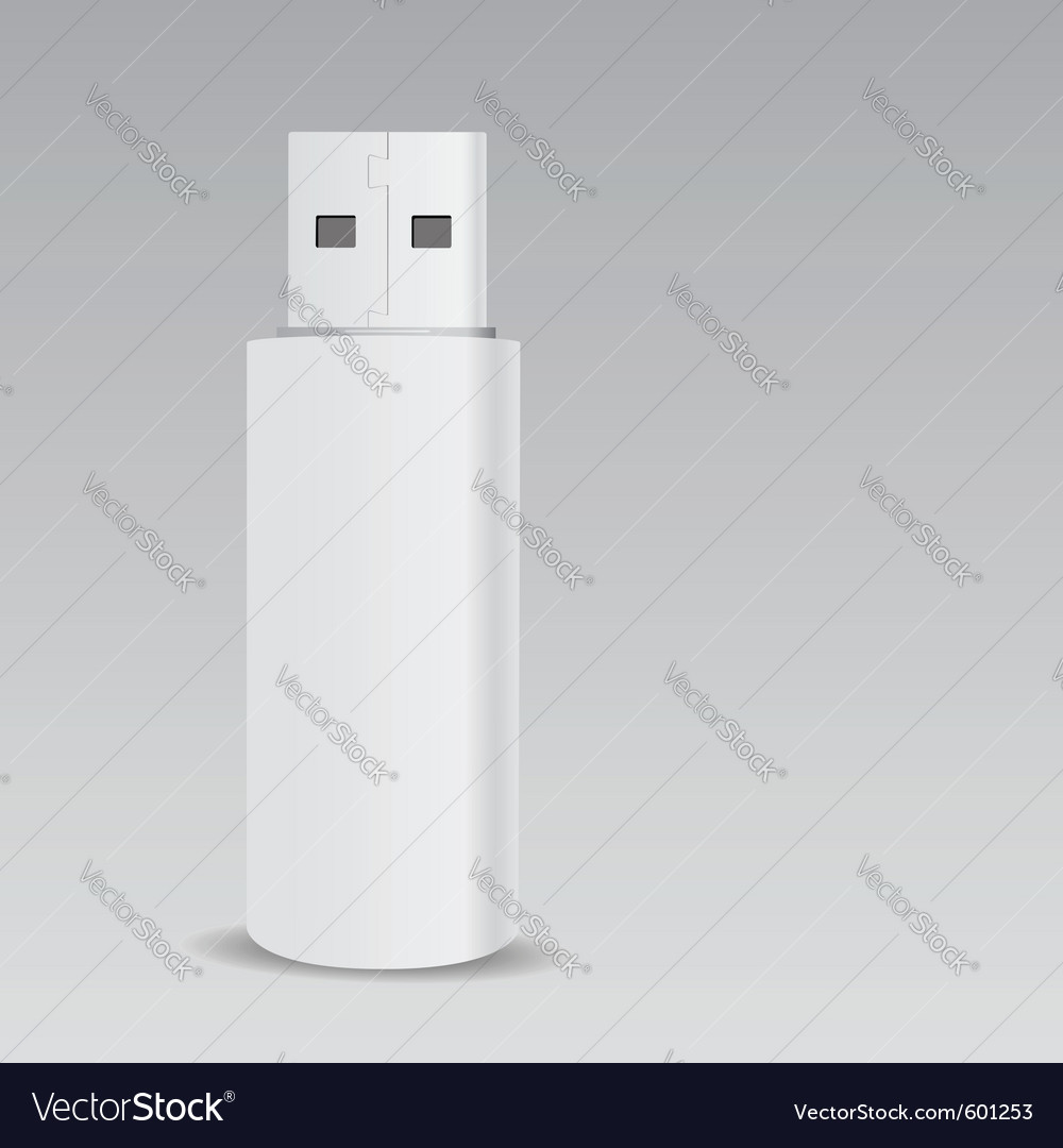 Usb flash drive vector image