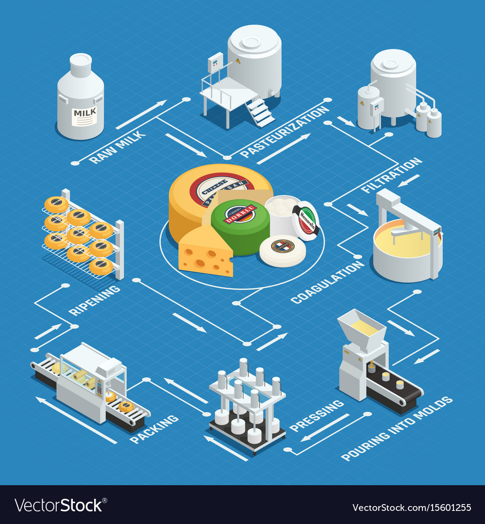 Cheese production factory isometric flowchart vector image cheese production factory isometric flowchart vector image nvjuhfo Choice Image