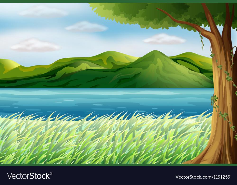 The blue sea vector image