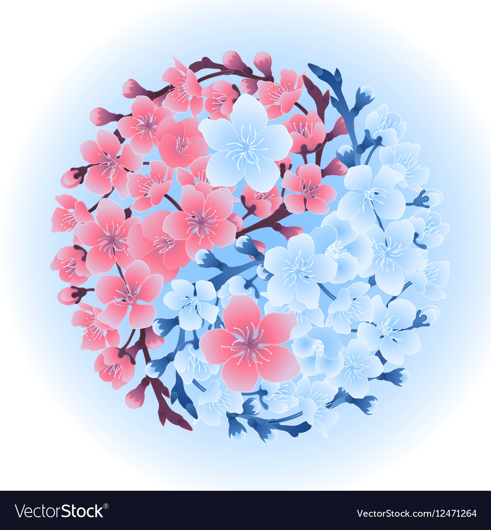 Yin Yang made of sakura vector image
