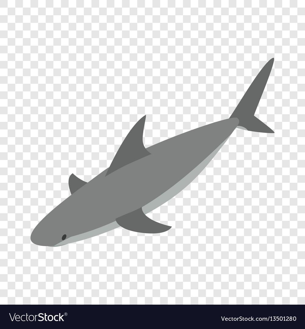 Shark isometric icon vector image