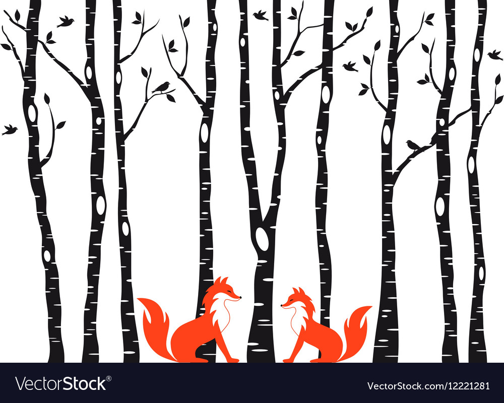 Cute foxes with birch trees vector image