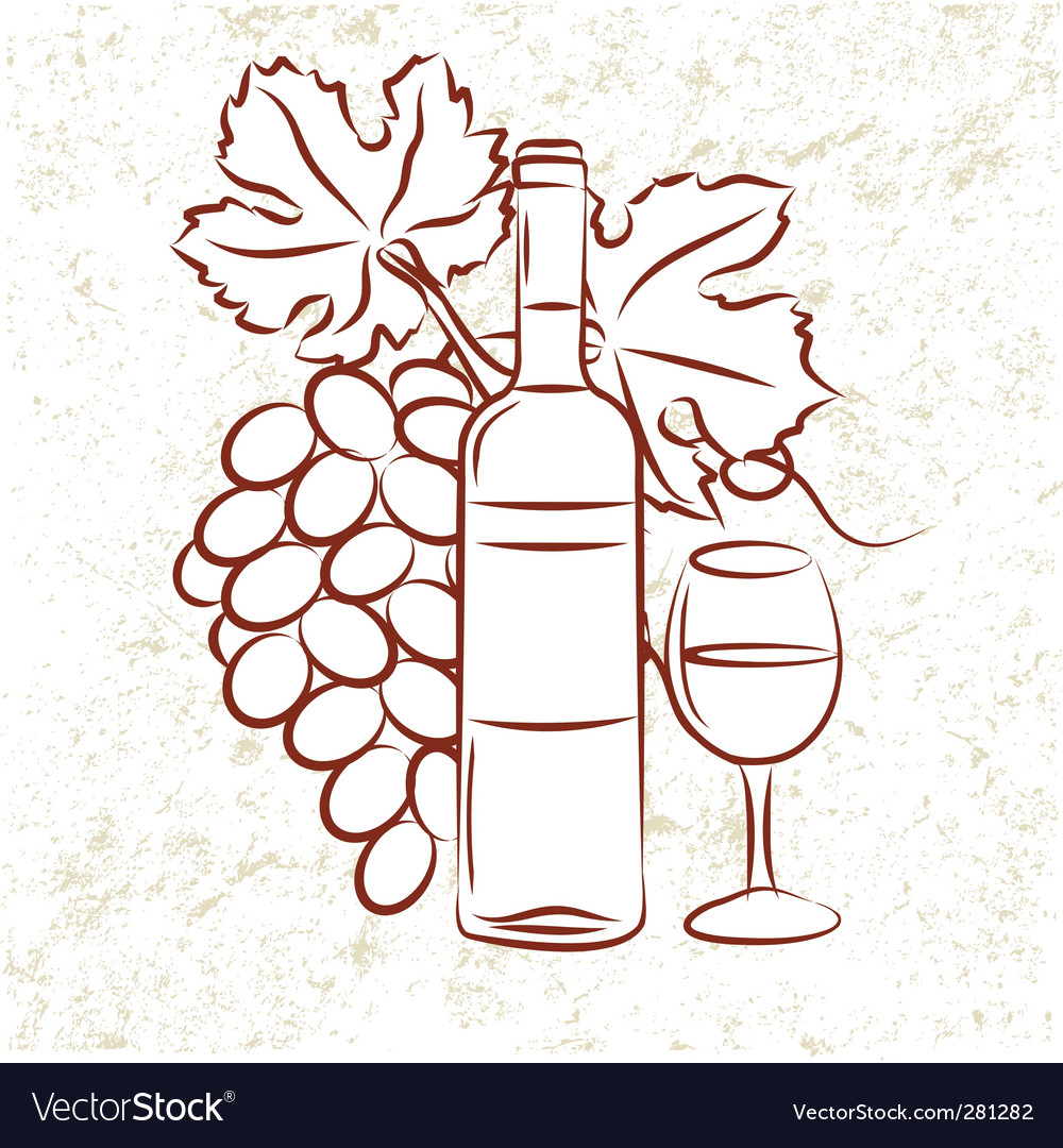 Vine and grapes vector image