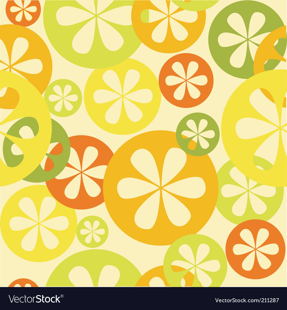 Citrus background vector image