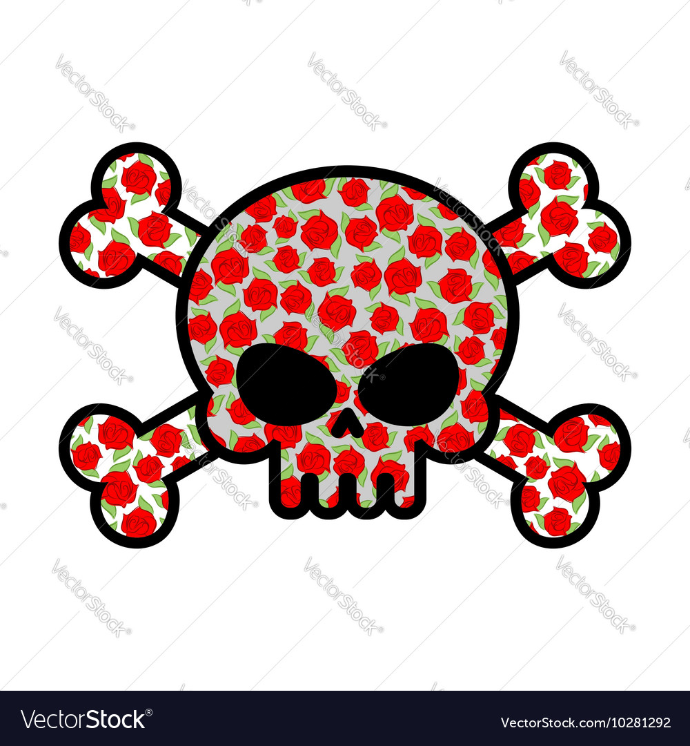 Skull with roses Flower head skeleton Crossbones vector image