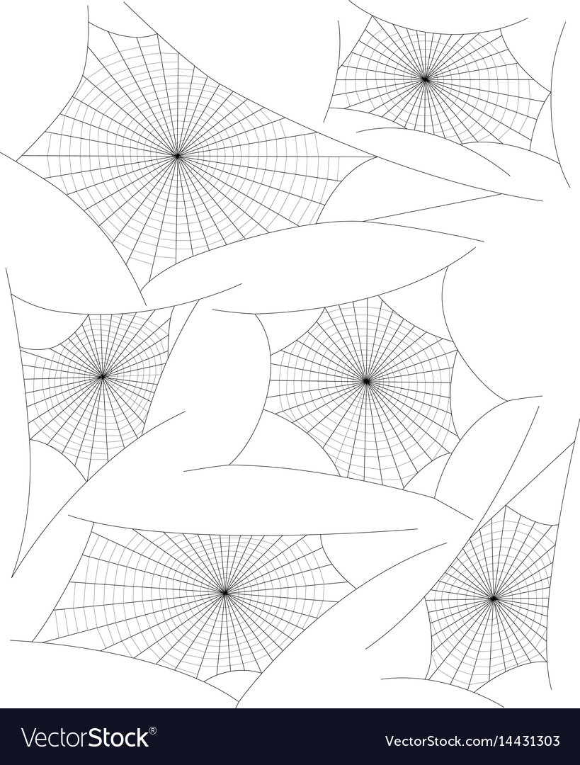 Spider webs vector image