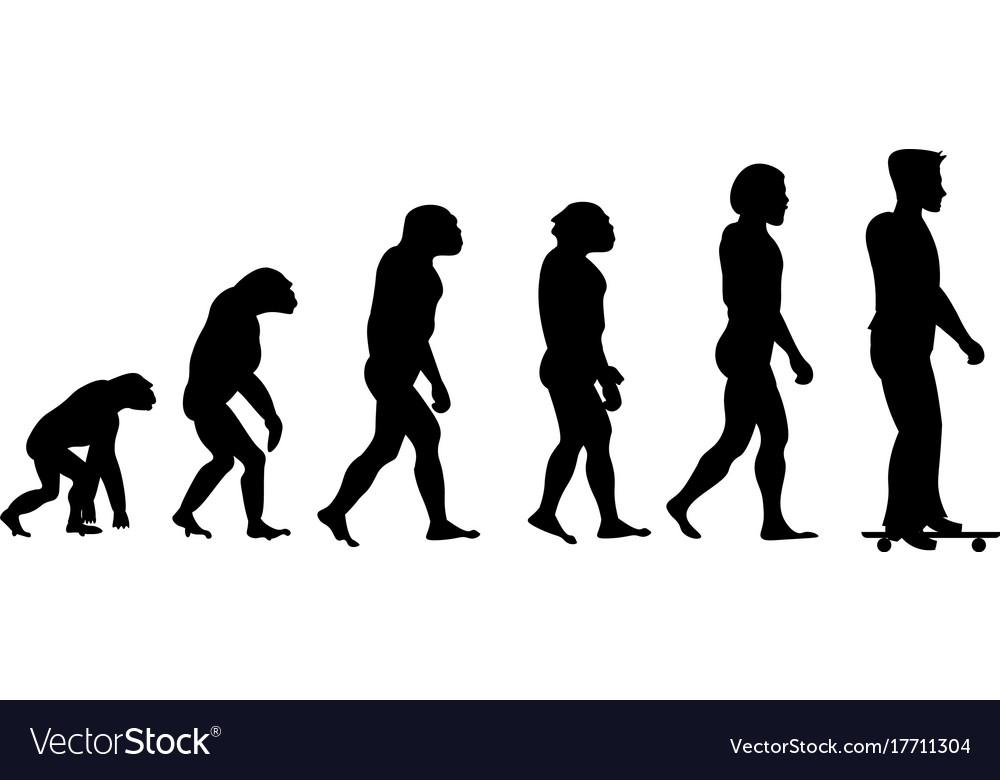 Evolution sport silhouette vector image