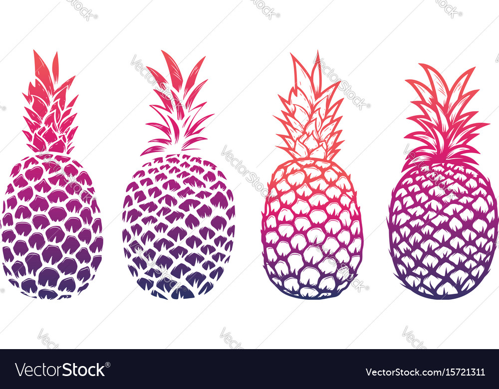 Set of pineapple isolated on white background vector image