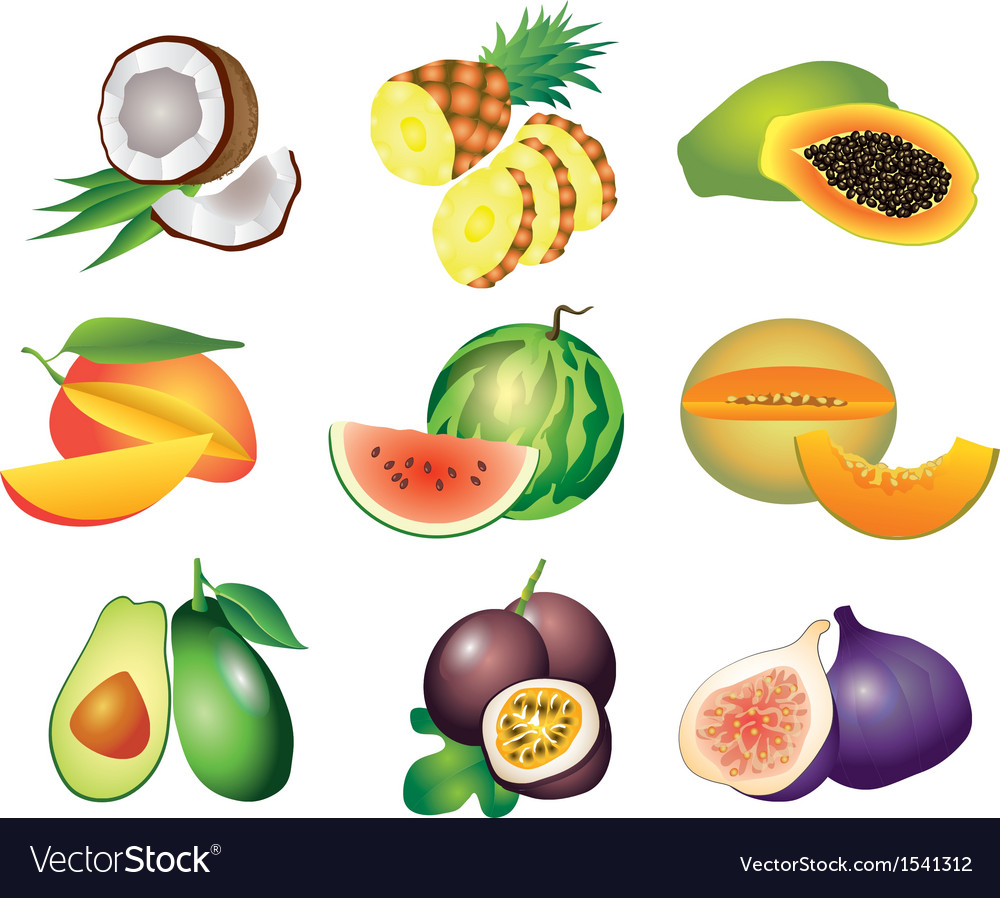 Fruits exotic set vector image