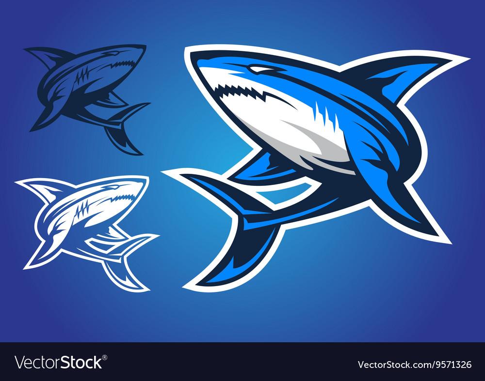 Shark emblem logo vector image